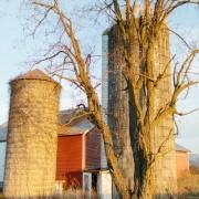 Farm Wedding Venue Near Harrisonburg